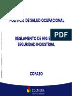 Presentacion_PSO_RHSI_COPASO
