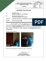 INFORME N°04_Disposición RRSS