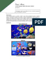 AVIS 4º S10-GUIA.pdf