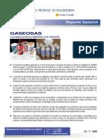 Bebidas Gaseosas Descripcion General