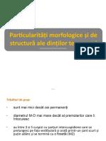 lp_morfologie_DT2.pptx