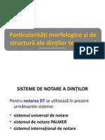 lp_morfologie_DT1.pptx