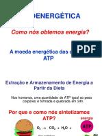 Bioenergética (1)