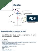 Biossinalização (1)