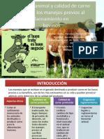 Bienestar animal y calidad de carne durante los.pptx