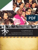03_consulta_previa_cap1.pdf