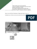 Clasificación de los catalizadores basada en las técnicas de preparación
