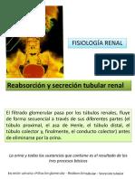 TEMA 20 REABSORCION Y SECRECION TUBULAR.pdf