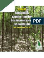 12.Vision y Prospectiva de los  SAF.pdf