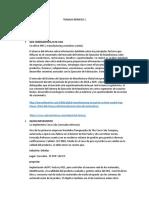 TRABAJO NÚMERO 1 herramienta MES.docx