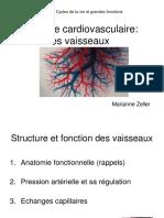 2016-Systeme-cardiovasculaire-les-vaisseaux