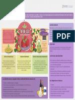 Información del lote de producción.pdf
