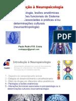 Neurociencia4
