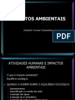 IMPACTOS AMBIENTAIS 2