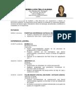 MODELO DE CV CON EXPERIENCIA.docx