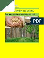 paulownia pour une économie verte Maroc-converti.pdf