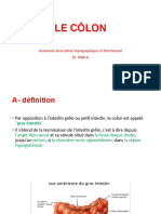 C19. Le colon