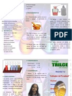 TRIPTICO-EXPERIMENTO.pdf