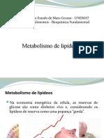 Metabolismo de lipídeos.pptx