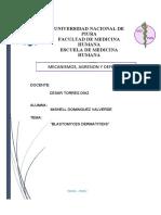 BLASTOMYCES DERMATITIDIS.docx