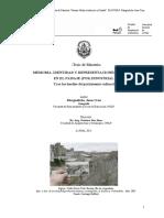 MarguelicheJuanTesisA.pdf