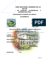 99244260-Proyecto-Paiche