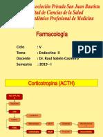 CLASE 19- Endocrino II