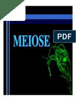meiose_didatico