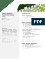 CURSO-GESTION-DE-RIESGOS.pdf
