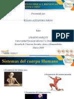 Sistemas corporales_Eliana Pardo