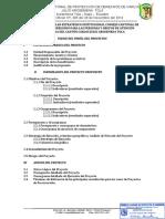 PROYECTO PLAN ESTRATÉGICO INSTITUCIONAL - DERECHO DE LAS PERSONAS