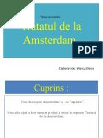 Tratatul de la Amsterdam-Proiect. (2)