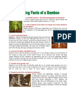 AMAZING FACTS OF A BAMBOO
