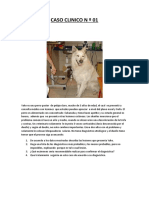 CASO CLINICO N º 01 y 02.patologia dermica