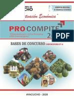 Descargar Bases Procompite Regional Ayacucho 2020 Imprimir