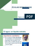 biomolculas-inorgnicas-1198277713665938-4-convertido