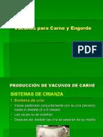 Vacunos de Carne-Sistemas-Engorde