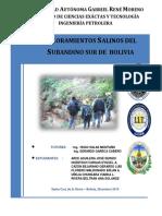 AFLORAMIENTOS SALINOS.pdf