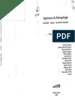 CHIRIGUINI (2008) Del colonialismo a la globalizacion (1)