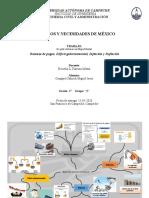 Mapa mental - Cosgaya Cahuich Miguel - 47261