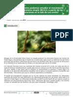 FISICA GRADO 11.pdf