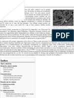 Célula - Wikipedia, la enciclopedia libre.pdf