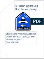 Biology-Report-On-Issues-With-The-Human-Kidney