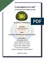 MONOGRAFIA-PROCESO-INFOGRAFIA-fusionado (2).pdf