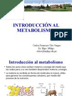 01 Introduccion al metabolismo.pptx