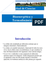 02 Bioenergetica y termodinámica.ppt