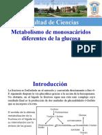 05A Metabolismo de monosacáridos diferentes de la glucosa.pptx