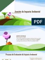 evaluacindeimpactoambiental-131120122932-phpapp01.pdf