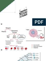 3 - Fisiologia de la Sangre - Hemostasia - 2014-I