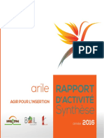 SYNTHESE-RAPPORT-ANNUEL-2016-ARILE.pdf